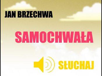 Słuchaj wiersza Jana Brzechwy Samochwała